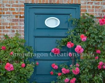 Pink Roses, Green Door Photograph, Kiel Germany