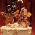 Coastal Beach Wedding Cake Topper Alternative Decoration Seashells Bride and Groom Starfish People Groom Top Hat Bow Tie Veil Bouquet Stand