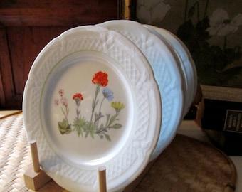 Six Lourioux France Plates, Dessert Plates, Wildflower Pattern, Cheese Plates, Vintage Serving Plates, Alfresco Dining