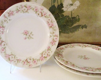 Set of Two Haviland Limoges France Luncheon Plates, Theodore Haviland Romantic Pink Roses Plates, Tea Plates, Mother's Day Plates