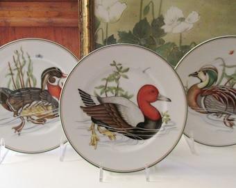 "Three Vintage Fitz and Floyd Duck Plates, ""Canard Sauvage"" Dessert Plates, 1980's Mallard and Wooduck Plates"