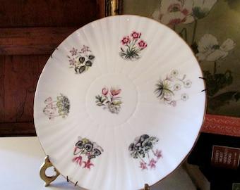 Royal Worchester English Dessert Plate, Porcelain Tea Plate, Romantic Decor, Wildflower Garden Plate, Wall Gallery Decor, Cabinet Plate