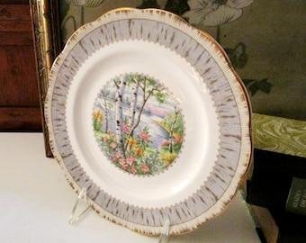 Royal Albert Silver Birch Plate, Vintage Salad or Dessert Scallop Gilded Edge Plate, English Bone China