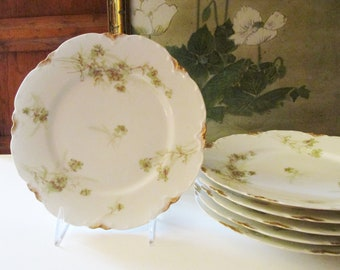 Six Limoges Haviland Dessert Plates, French Plates, E.B. Taylor Company, Richmond, VA, Romantic China,