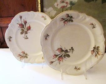 Two Rosenthal Dinner Plates, Park Lane Plates, Romantic Dining, Scallop Edge Plates, Moss Rose Plates