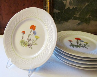 Six Lourioux France Plates, Dessert Plates, Wildflower Pattern, Cheese Plates, Vintage Serving Plates, Alfresco Dining, Bread and Butter