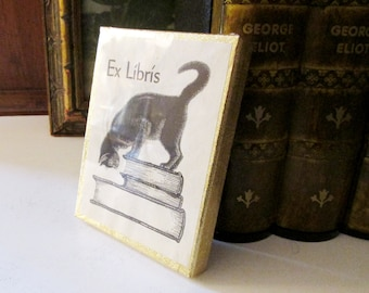 Vintage Sealed Boxed Rare Antioch Publishing Company, Cat On Stack of Books, Antioch Bookplate, Collectible, Set of Fifty Bookplates