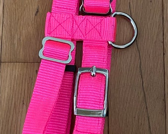 Adjustable Hog (PIG) Harness With Leash Double Bar Buckle Easy Fit Tiny to Huge
