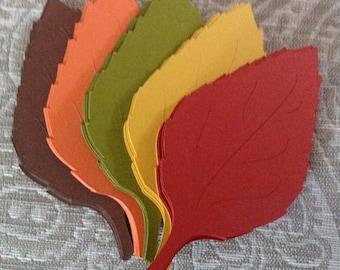 50 Large Veined Fall Leaves die cuts