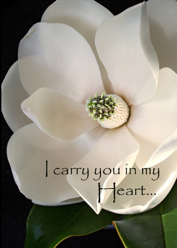 "Magnolia - ""I Carry You in my Heart"" (5"" x 7"" photographic greeting card  - blank inside/with envelope)"
