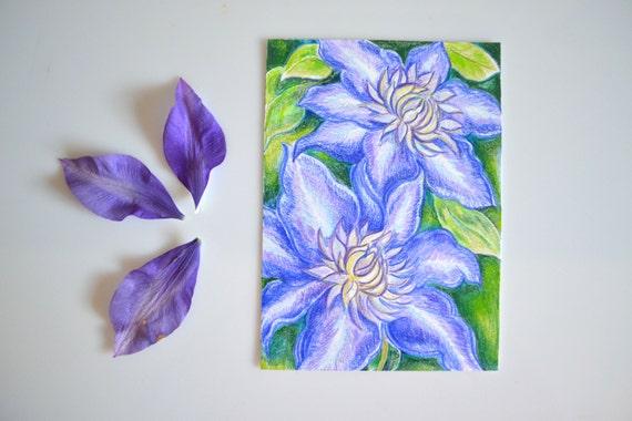 Clématite Mauve Fleur Originale Couleur Crayon Dessin 5 X 7 Fleur Art Art Mural Petit Cadeau à La Main Dessiné Des Fleurs