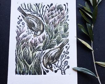 Finches and Proteas original Lino cut