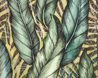Ferns water colour illustration