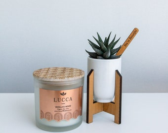 Happy Home   Plant and Candle Gift Box
