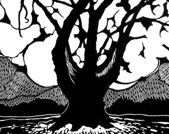 Skeleton Oak