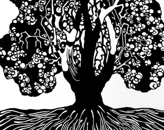 Living Oak