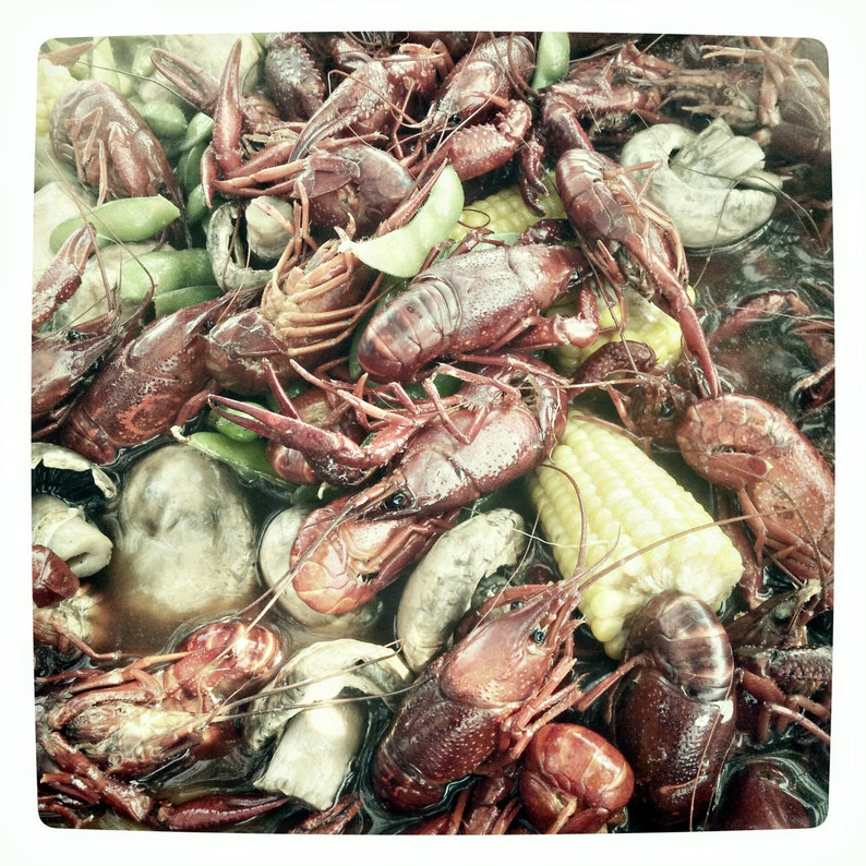 Crawfish Berl 1 by J. Ensley image 0
