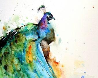 PEACOCK Watercolor BIRD Print,  Bird Art by Dean Crouser