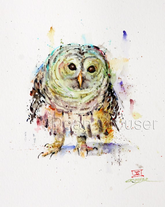 PYGMY OWL Watercolor Print by Dean Crouser
