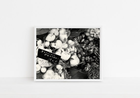 Black And White Paris Photography Peony Photograph French Etsy