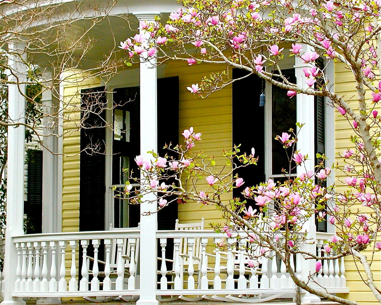 Southern Decor - Spring Photography - Charleston Photograph - Yellow ...