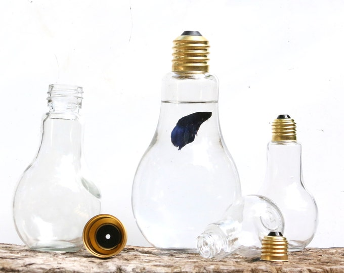 Light Bulb Display Bowl, Lightbulb Jar, Desktop Glass Jar ,Organic Water Gardens, Single Bulb Jar Catch All, Shelf Home Decor