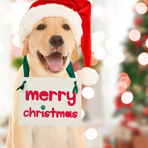 christmas puppy surprise sign merry christmas dog paw print etsy etsy