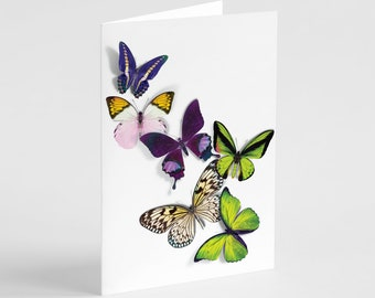 24 Butterfly Greeting Cards Box Set Blank Notecards Beautiful Wings All Occasion 6655