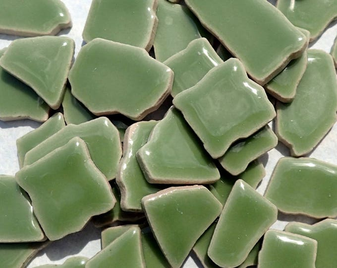 Jade Green Mosaic Ceramic Tiles - Jigsaw Puzzle Shaped Pieces - Half Pound - Assorted Sizes Random Shapes - Mosaic Art Supplies