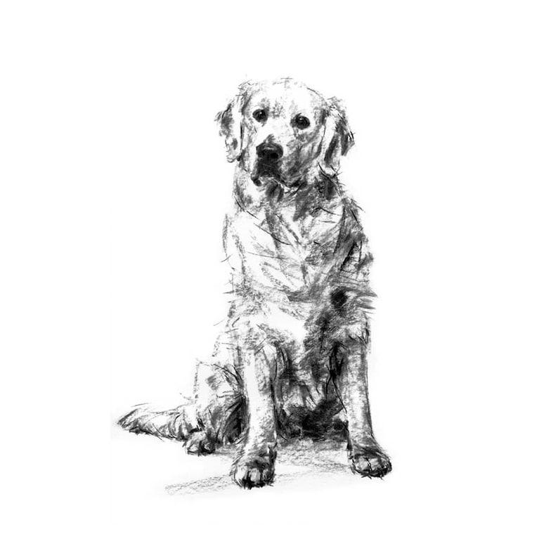 hond tekening afdrukken golden retriever tekening kunst | etsy