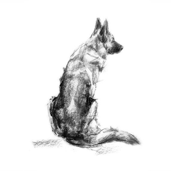 German Shepherd Dog Sketch Fine Art Dog Print Gsd Gift Etsy