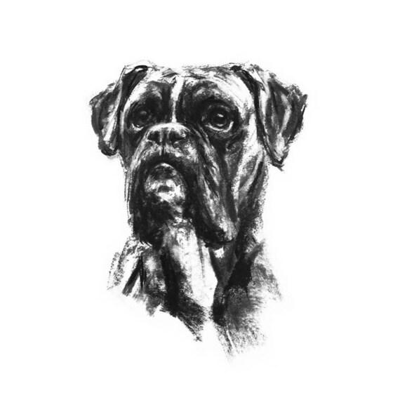 Hond tekening afdrukken boxer hond tekening beeldende kunst etsy - Dessin chien boxer ...