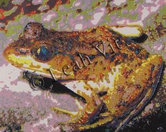 Colorful frog silkscreen print