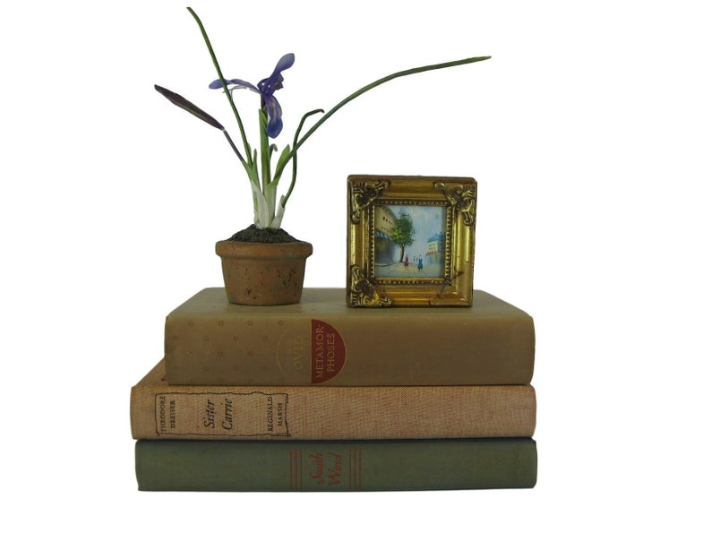 Awesome Coffee Table Books Decorative Book Set For Mantel Decor Old Books Shelf Filler For Home Staging Or Wedding Reception Centerpieces Download Free Architecture Designs Scobabritishbridgeorg