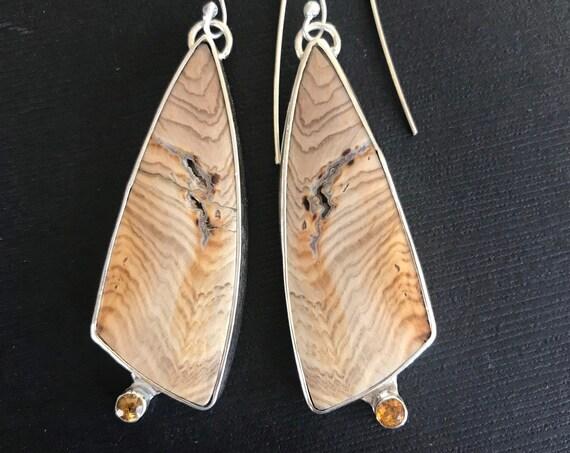 Hells Canyon Idaho petrified wood and citrine earrings