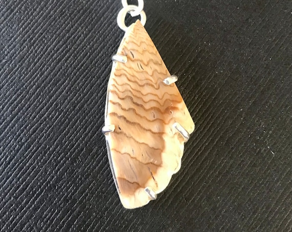Feather like petrified wood pendant