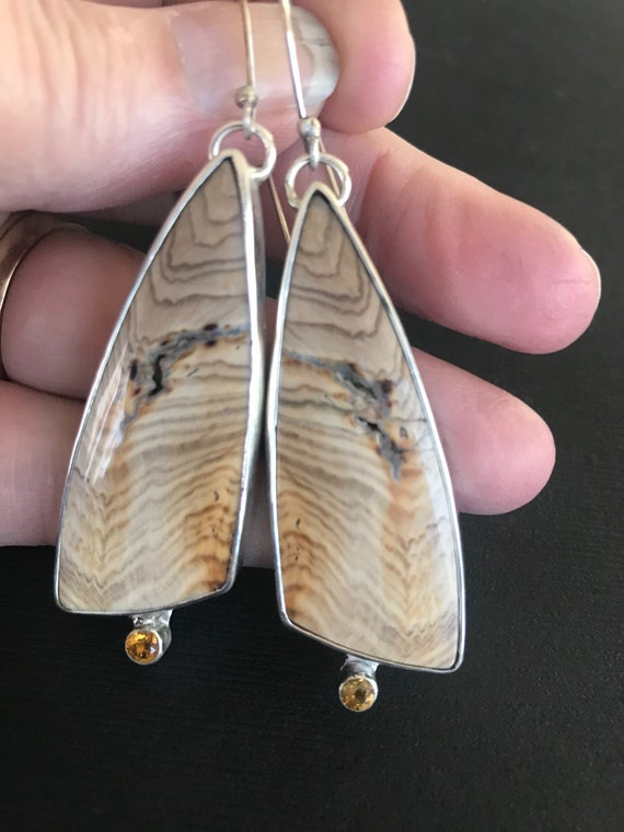 Hells Canyon Idaho petrified wood and citrine earrings