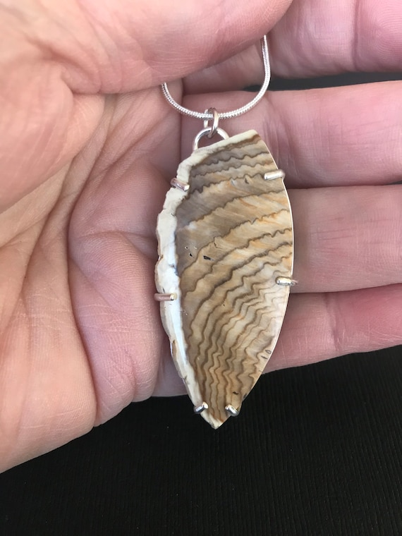 Hells Canyon Idaho petrified wood pendant