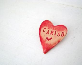 Cariad Brooch