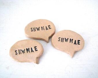 Shwmae brooch.