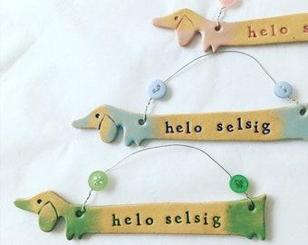 Helo Selsig