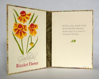 Flower Lore Diptych – Blanket Flower (Gaillardia) – 4 Color Letterpress Endsheets with Book Casing Structure (Item No. 247)
