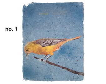 Female Oriole (Baltimore Oriole) -- bird pulp painting on handmade indigo dye paper (2020), Item No. 333