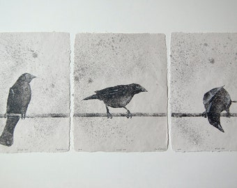 Wired, Set of 5 – handmade paper pulp paintings of crows on a wire (2018), Item No. 244.231-235