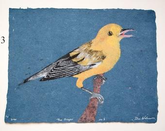 The Singer (Prothonotary Warbler) -- bird pulp painting on handmade indigo dye linen paper (2021), Item No. 335