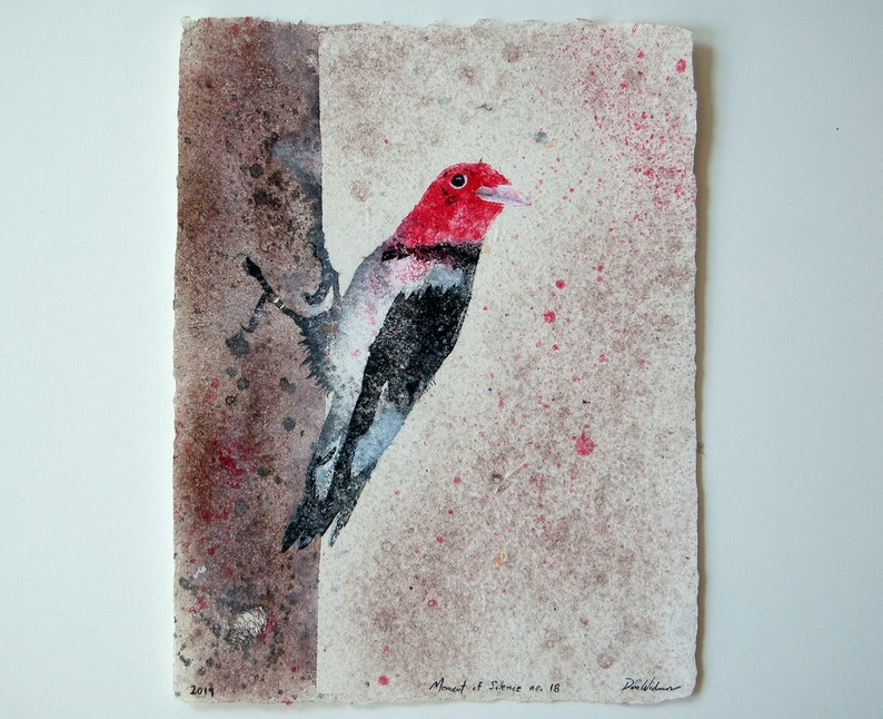 Moment of Silence No. 18  Red-headed Woodpecker pulp image 0