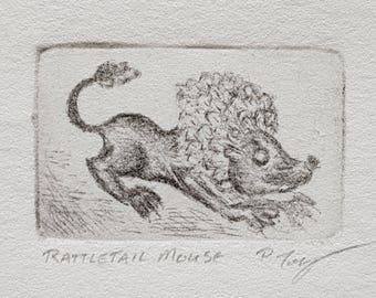 Rattletail Mouse Tiny Dry Point Copper Etching FREE SHIPPING Cute Magical Creature Fairy World Fae Hybrid Animal SciArt