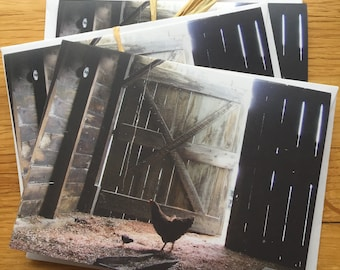 Hen and chick - Photo Notecard - Free Shipping