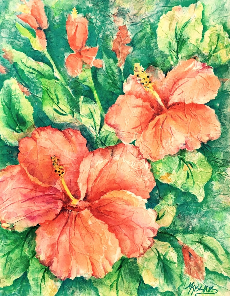 Peach Hibiscus Hibiscus Watercolor Tropical Flowers Orange Etsy