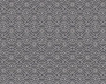 Grey Fabric Natural Wonder Blend Fabrics Josephine Kimberling Sweet as Honey One Yard